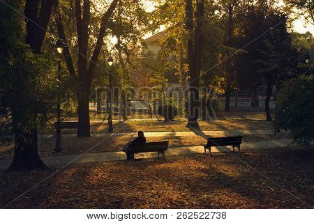 Woman Sitting On Bench In The Park. Woman On The Bench In The Park In Autumn. Autumn Colors In The P