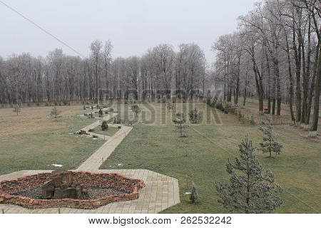 Bare Tree Beauty In Nature Day Environment Field Grass Grave Growth Land Landscape Non-urban Scene O