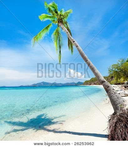 Tropical sandy beach Malcapuya at summer sunny day