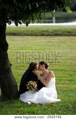 Kissing Newklywed Couple