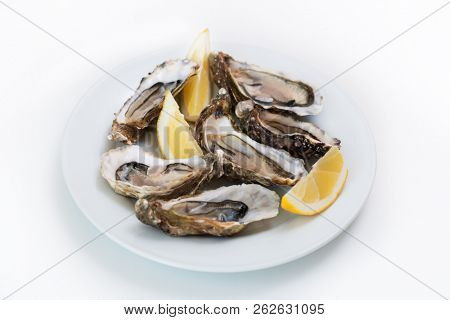 Fresh oyster. Raw fresh oyster on white round plate, image isolated, with soft focus. Restaurant delicacy. Saltwater oyster, soft focus