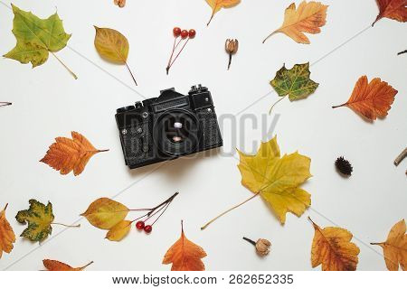 Vintage Retro Camera And Floral Frame Of Autumn Fall Leaves. Flay Lay, Top View