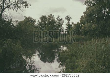 River and trees. Summer landscape. Natural background. River. River landscape. Before a storm.