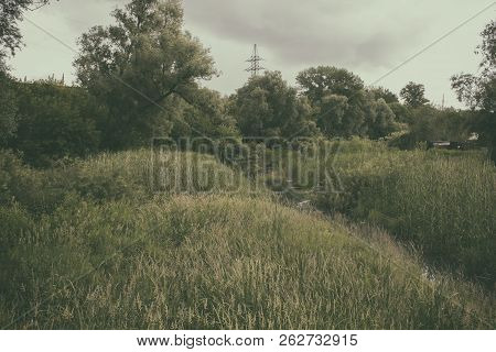 Beautiful summer landscape. River and trees. Summer background. River. River landscape. Before a storm.