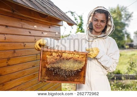 Young Female Beekeeper Hold Wooden Frame With Honeycomb. Collect Honey. Beekeeping Concept