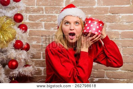 Woman In Santa Hat Hold Gift Box. Girl Celebrate Near Christmas Tree. Unpacking Christmas Gift. Lady