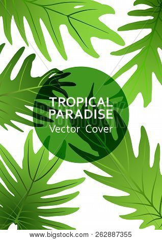 Tropical Paradise Leaf Vector Cover. Cool Floral A4 Page Design. Exotic Tropic Plant Leaf Vector. Su