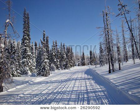 Snowmobile trail in winter