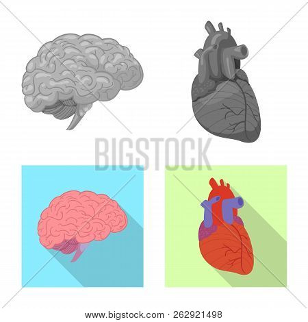 Vector Illustration Of Body And Human Logo. Set Of Body And Medical Vector Icon For Stock.