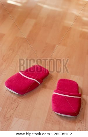 A pair of warm slippers on the parquet