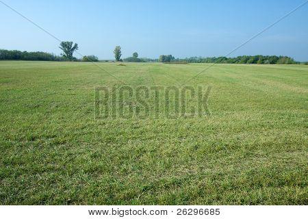 Groen grasveld en heldere blauwe hemel