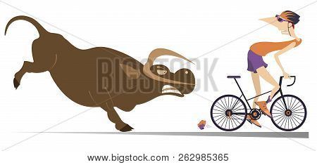 Angry Bull And Cyclist Cartoon Illustration. Frightened Cyclist Escapes From The Angry Bull Isolated