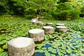 Zen stone path in a Japanese Garden near Heian Shrine.Stones are surrounded by lotus leaves poster