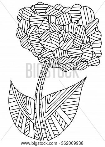 Flower On A Stalk With Two Leaves Coloring Book Page. Detailed Blossom Flower Black Outline Isolated