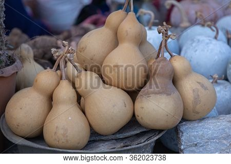 Dried Bottle Gourd Or Calabash Gourd In Northern Market Of Thailand.