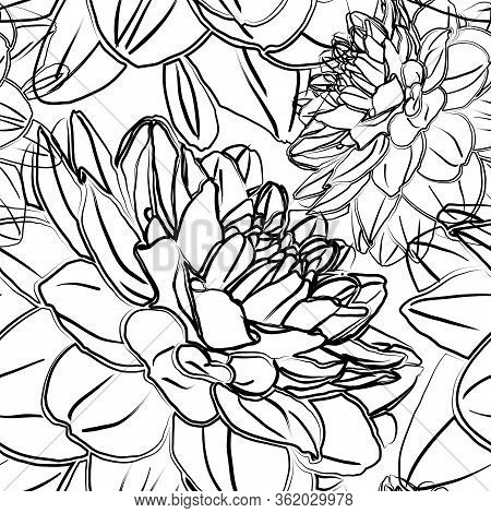 Seamless Pattern With Flowers Of Dahlia. Black And White Silhouette. Good Design For Textile, Wrappi
