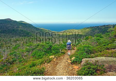 Backpacker hiking the Green Gardens trail in Gros Morne National park poster