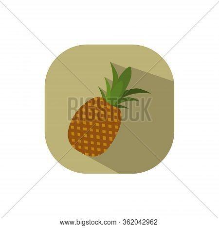 Ananas Pineapple Vector Flat Design Brown Background Fruit