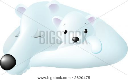 a mom polar bear with a little one in her arms as she naps. poster