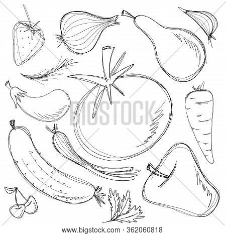 Hand Drawn Vegetables And Fruits Set. Collection Of Food Sketch. Vector Illustration Isolated On Whi