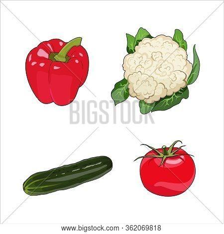 Vegetables Set. Cucumber, Cauliflower, Bell Pepper Paprika, Tomato Organic Farm Food. Healthy Raw Ve