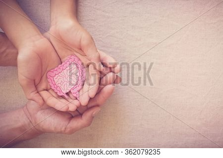 Adult And Child Hands Holding Intestine Shape, Healthy Bowel Degestion, Leaky Gut, Probiotics And Pr
