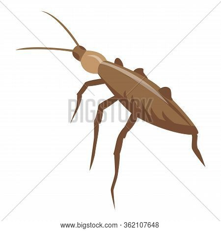 Pest Cockroach Icon. Isometric Of Pest Cockroach Vector Icon For Web Design Isolated On White Backgr