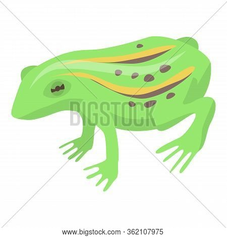 Lake Frog Icon. Isometric Of Lake Frog Vector Icon For Web Design Isolated On White Background