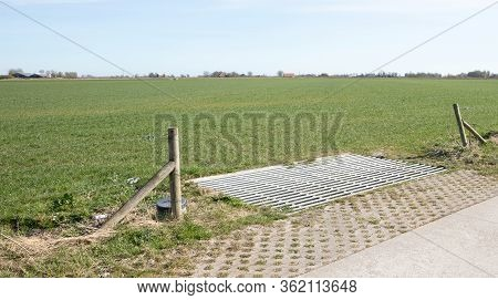 Cattle Grid In Ground, An Obstacle Used To Prevent Wild Cattle And Other Wildlife From Crossing