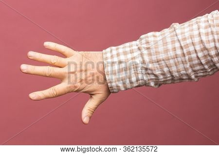 Hand And Fingers Of The Hand Of An Adult Person
