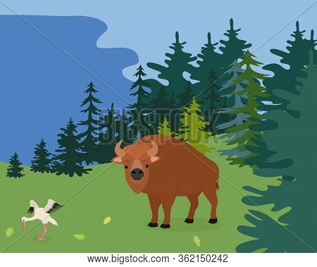 Wild Bison Stand Forest, Outdoor Natural Park Flat Vector Illustration. Ecology Surrounding Environm