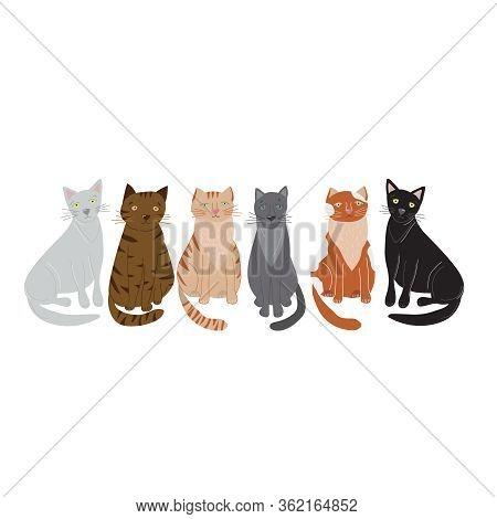 Cartoon Cute Cat Or Kitten Domestic Pet Row Concept Flat Design. Vector Illustration Of Cats Icons