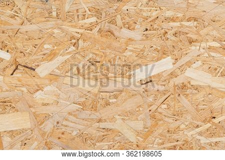 Oriented Strand Board. Chipboard Building Material. Osb Wooden Panel Made Of Pressed Sandy Brown Woo