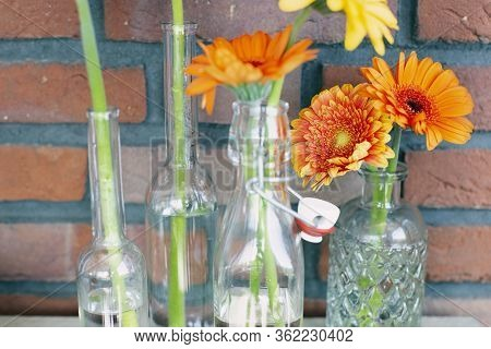 Decorative Shelf On Brick Wall With Colorful Gerbera Dasies In Glass Vase Close-up