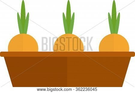 Onion In Ground Pot Icon. Flat Illustration Of Onion In Ground Pot Vector Icon For Web Design.