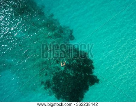 Two People Are Snorkeling In Green Tropical Water Together. Birds Eye View Aerial Drone Image.