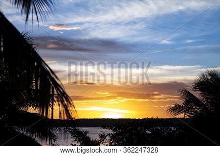 Shocking Sunset With Some Clouds In The Sky. Silhouette Of A Palm Tree With Coconuts.