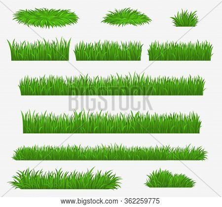 Green Grass Blades Borders And Landscaping Constructor Plants, Vector Isolated Realistic Icons. Mead