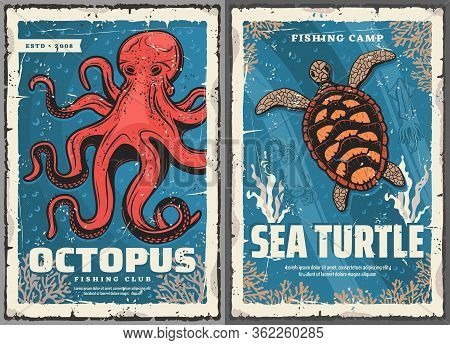 Sea Turtle, Octopus, Crab And Squid Retro Posters Of Fisherman Club And Fishing Sport Vector Design.