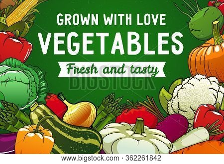 Vegetables, Vector Food Of Farm Garden. Tomato, Peppers And Green Cabbage, Carrot, Radish And Caulif