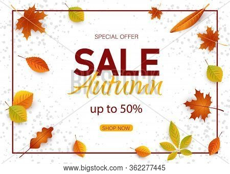 Autumn background. Sales autumn banner with autumn leaves vector autumn banner. Banners with fall leaves. Autumn season discount offers with red and orange realistic foliage. Colorful leaf design vector seasonal autumnal sale abstract tag templates