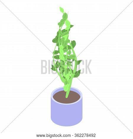 Botanical Houseplant Icon. Isometric Of Botanical Houseplant Vector Icon For Web Design Isolated On