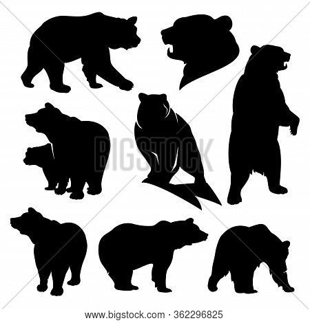 Wild Grizzly And Brown Bear Silhouette Set - Walking, Standing, Rearing Up Animals Black Vector Outl