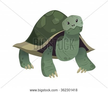 Cartoon Cute Turtle. Standing Smiling Happy Snorkel Tortoise, Vector Isolated Tropical Animal Charac