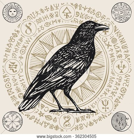 Vector Illustration With A Wise Black Raven Or Sorcery Crow In Retro Style. Hand-drawn Banner With M