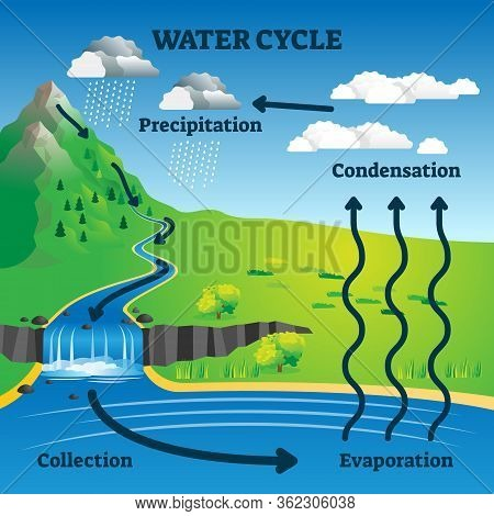 Water Cycle Vector Illustration. Labeled Earth Hydrologic Process Explanation Diagram. Environmental