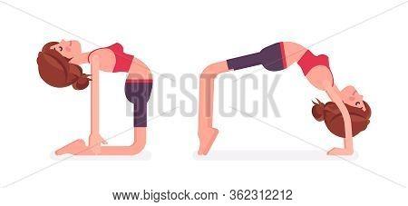 Young Sporty Yogi Woman Practicing Yoga, Doing Ustrasana, Camel Pose And Bridge, Urdhva Dhanurasana