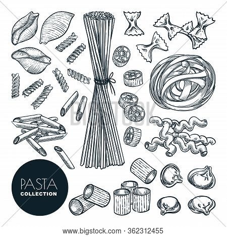 Homemade Pasta Collection Isolated On White Background. Vector Sketch Macaroni Illustration. Italian