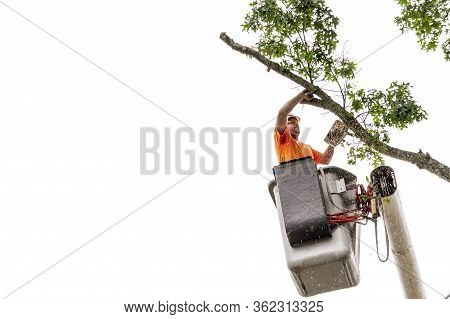Fairhaven, Massachusetts, Usa - August 13, 2018: Wood Chips Spraying From Chainsaw As Man Cuts Throu