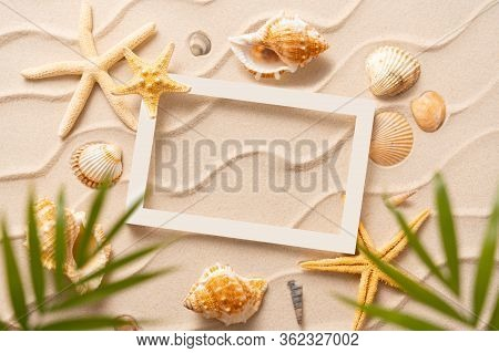 Summer Beach Background, Sand, Shells, Seastar With Blurred Palm, Vacation And Travel Concept, Flat